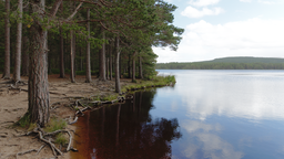 img nharvey-Cairngorms_Lake.png