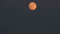 img rachmaninoff-orange_moon.png